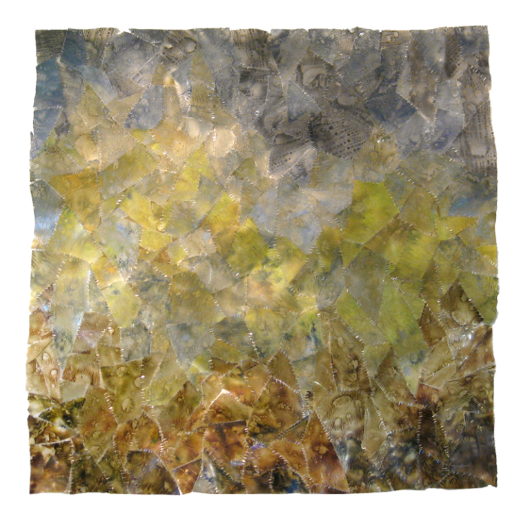 Lichen at Brush Creek