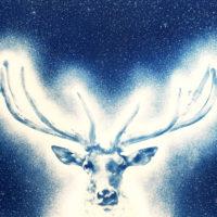 """Illumination, cyanotype print, edition 5, 40""""x56"""""""