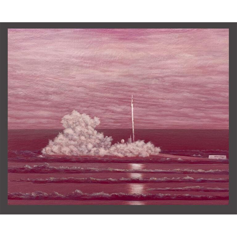 alizarin pink Space X Crew Dragon spacecraft, inaugural launch